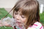 Is There a Relationship Between Children's IQ and Fluoride